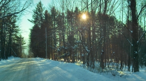 Mountain road, late afternoon