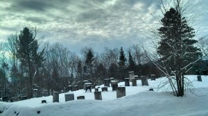 The cemetary I passed every day on my way to visit puppy