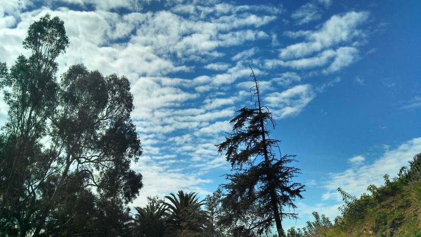 LA - sky