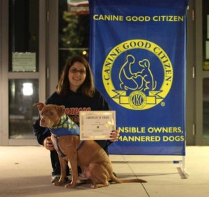 Dodger and his owner Melissa after passing CGC test [photo source: pitsisters.org]