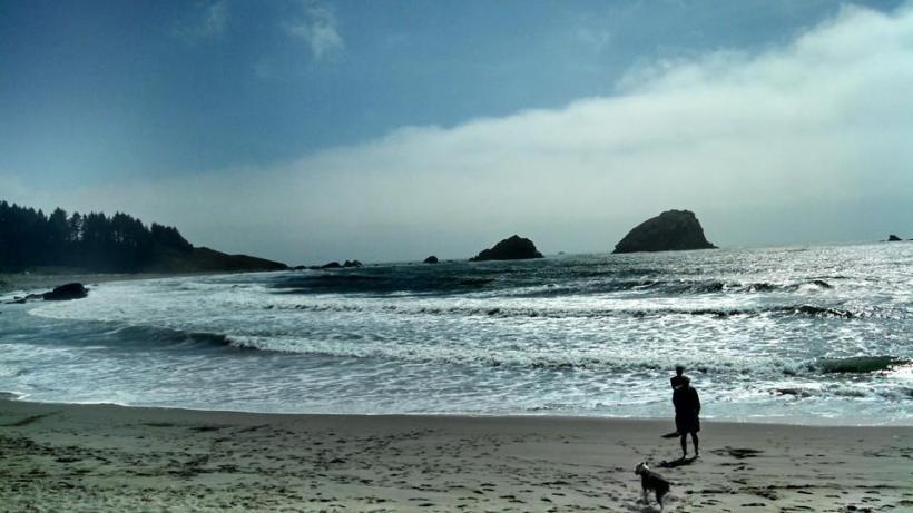 Northern Cali beach