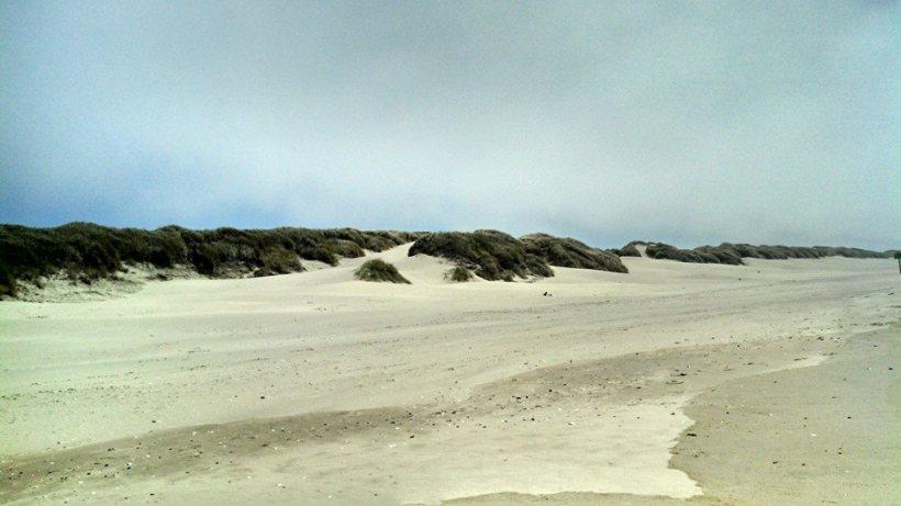 Oregon dune2