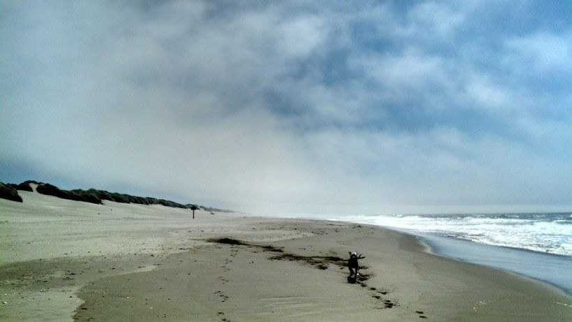 Oregon dune3