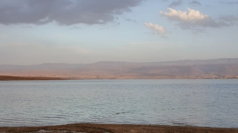 israel 7